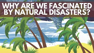 the-psychology-of-natural-disasters-shrink-tank-podcast.jpg