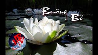 14 câu nói của Phật tổ, đọc xong tỉnh ngộ khỏi cơn mê