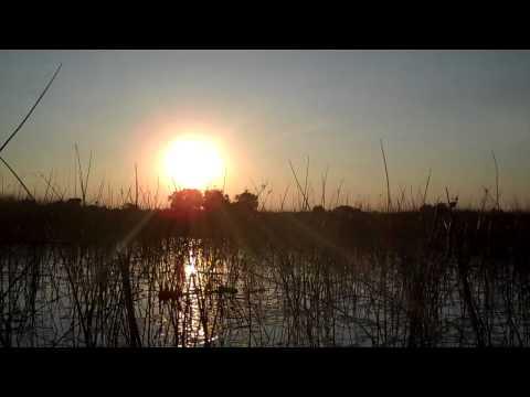 Canoeing at the Okavanga Delta