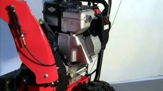 Locating Model Type Trim on a Briggs & Stratton Snow Engine