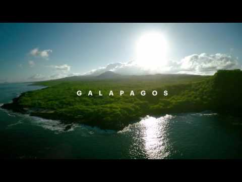Life Beyond Walls: Galapagos Preview