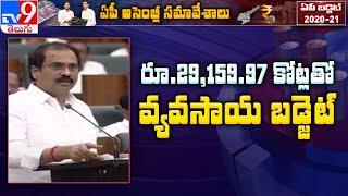 AP Agriculture Budget 2020 : Kannababu introduces budget o..
