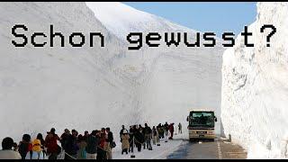 Schon gewusst? - 293 Kilometer Stau & 15 Meter Schnee! #5