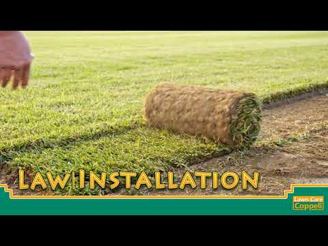 Lawn Care Coppell - Full Service Lawn Care Company Coppell, TX
