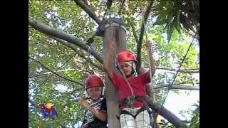 João Vitor, Lucas e Larissa, os 3 do Rio de Janeiro, que nunca haviam brincado em árvores, participam de uma grande aventura.