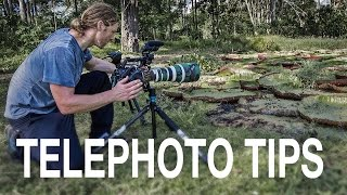 Telephoto Photography - Why are my pictures blurry?