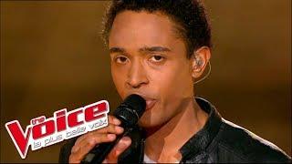 The Voice 2012   Stephan Rizon -  Le Penitencier (Johnny Hallyday)   Prime 3
