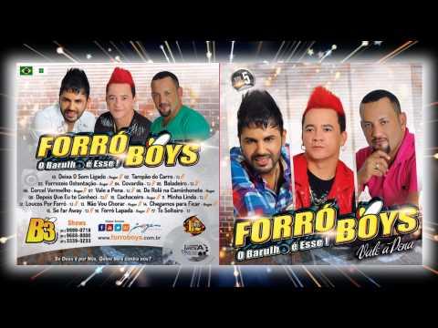 Baixar Forró Boys Vol. 5 - 10 Cachaceiro 2014