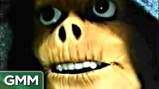 6 Most Bizarre Kids Shows