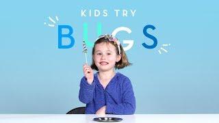 Kids Try Bugs   Kids Try   HiHo Kids