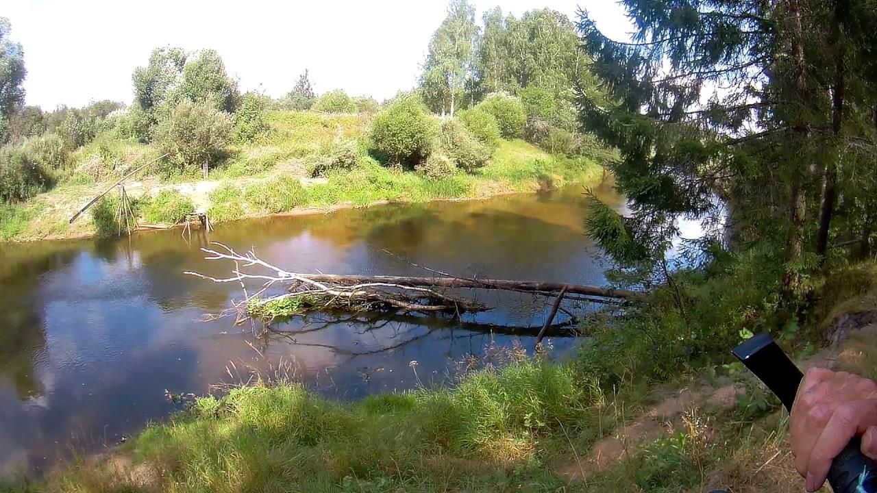 Рыбалка река дубна вербилки
