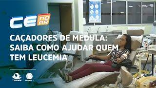 Caçadores de medula: saiba como ajudar quem tem Leucemia