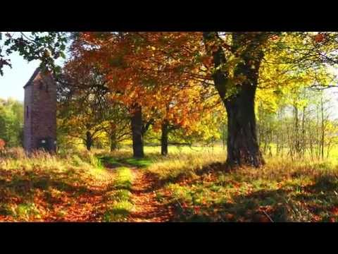 Frédéric Chopin - Prélude in A Major Op. 28 No 7