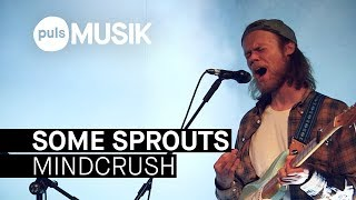 Some Sprouts – Mindcrush (PULS Live Session)