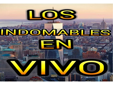 LOS INDOMABLES -  EN VIVO