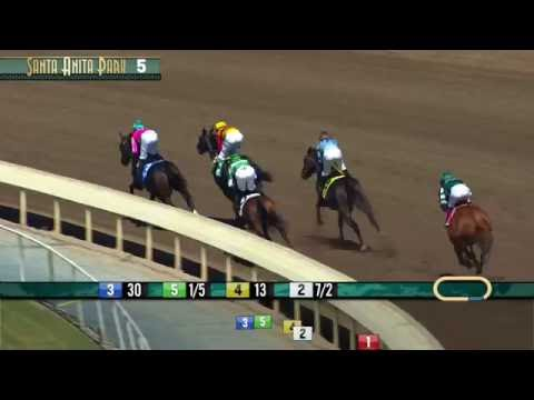 Affirmed Stakes (Gr. III) - Saturday, July 2, 2016