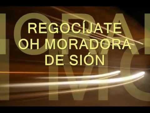 Regocijate Moradora de Sion Miel San Marcos  Letra