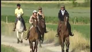 La randonnée à cheval dans les alpes de haute-provence