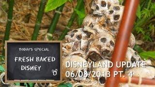 Disneyland Update 06.08.13 Pt. 4 | Treasure Hunt! | Fresh Baked [HD]