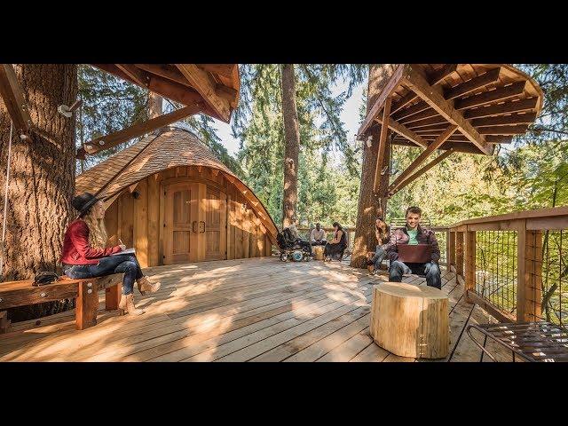 就算加班也有好心情!微軟最美的樹屋辦公區