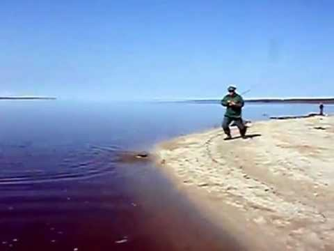 Ржака на рыбалке