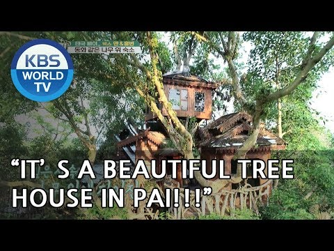 A Beautiful Tree House in PAI !!  [Battle Trip/2018.06.03]