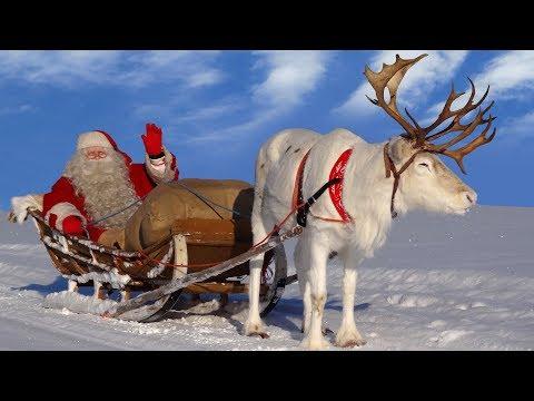 Santa Claus: best reindeer rides of Father Christmas Lapland for kids: Finland Rovaniemi children