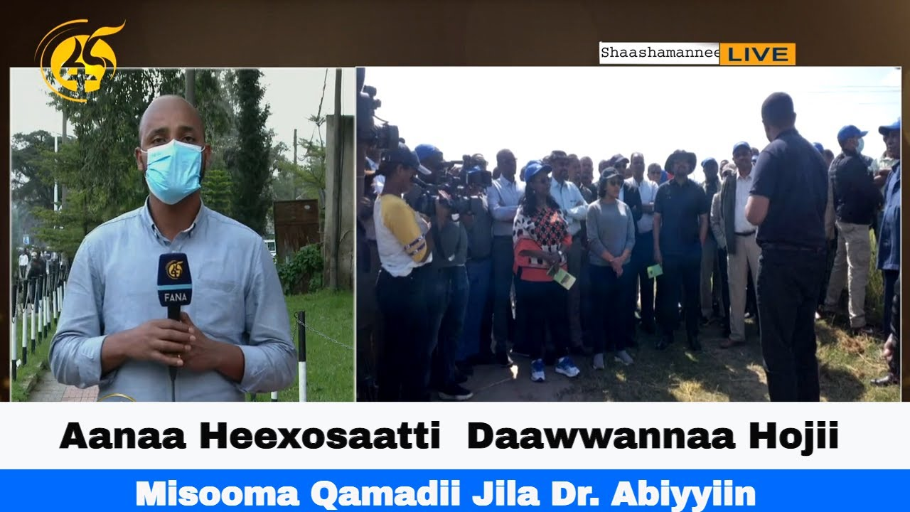 Aanaa Heexosaatti   Daawwannaa Hojii Misooma Qamadii Jila Dr. Abiyyiin