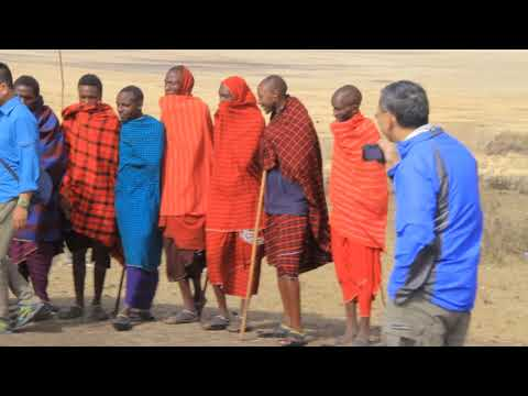 Experiencing The Magic Of A African Safari Adventures