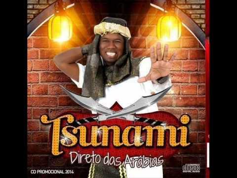 Baixar TSUNAMI 2014 (CD COMPLETO) • DIRETO DAS ARÁBIAS