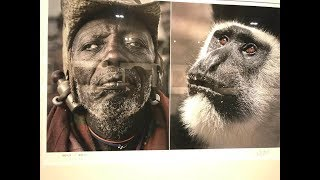 Museum In China Portrays Black People as ANIMALS
