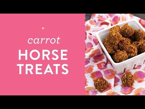 Easy Homemade Carrot Oat Molasses Horse Treats Cookies