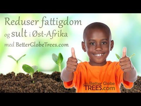 Better Globe: Fattigdomsbekjempelse i Afrika med trær