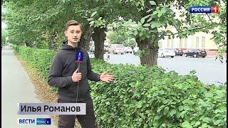 Остановка или зеленая зона — в Омске могут  вырубить часть деревьев. Возможен  ли компромисс?