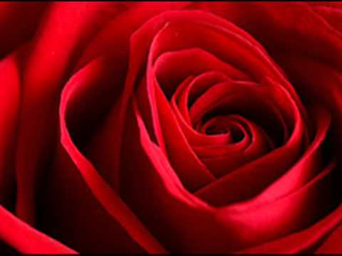 Los Hermanos Carrión - Rosas Rojas