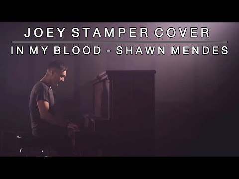 In My Blood by Shawn Mendes | Joey Stamper Cover
