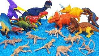 쥬라기월드 슐라이히 공룡메카드 공룡해골 공룡 장난감 공룡이름 배우기