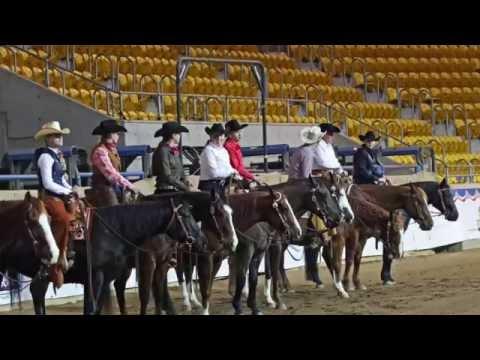 2016 American Quarter Horse Youth World Cup -- Last Day of Competition -- July 2