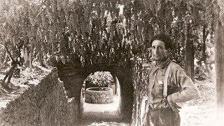 California Dreamer: Fresno's Mysteriously Beautiful Underground Garden