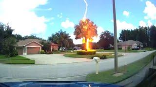 Lightning Strikes Tree On Bright Sunny Day