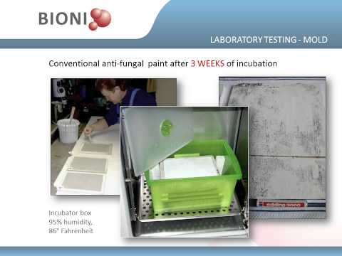 Presentation Bioni Overview - Double Tree