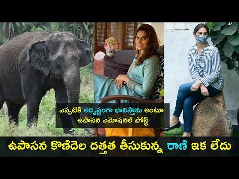Upasana Konidela emotional post on female asiatic Elephant Rani