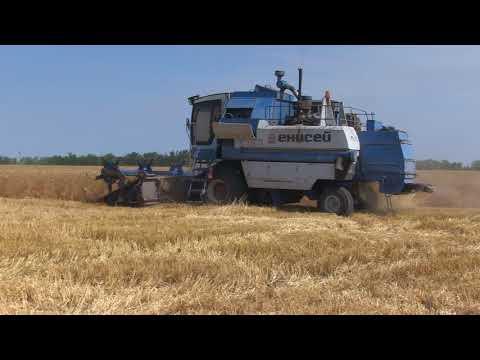 Выездное совещание на полях сельхозпредприятия ЗАО «Семена»