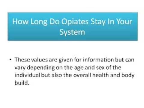 How Long Do Drugs Stay In Your System Drug Facts The Body