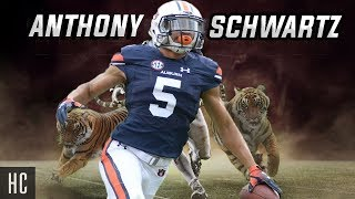 One of the Fastest Players In CFB 🗣 Anthony Schwartz Highlights    Auburn Tigers WR ᴴᴰ