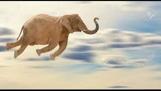 Huge Flying Elephant in Africa