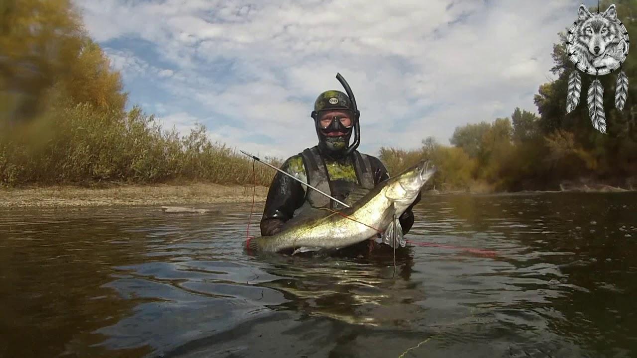 Рыбалка на реке урал оренбургская область