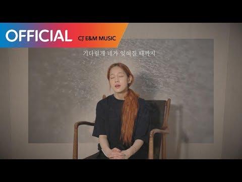 [박보람의 달 밤 라이브] '장마' Cover