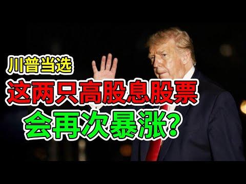 川普当选,这两只高股息股票能否再次暴涨?【有CC字幕】NaNa说美股(2020.09.22)