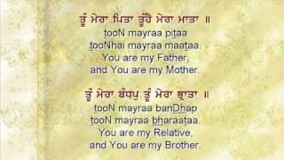 Too Mera Pitaa – Bhai Gopal Singh Ji